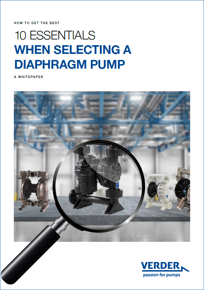 whitepaper 10 essential selecting a DDP